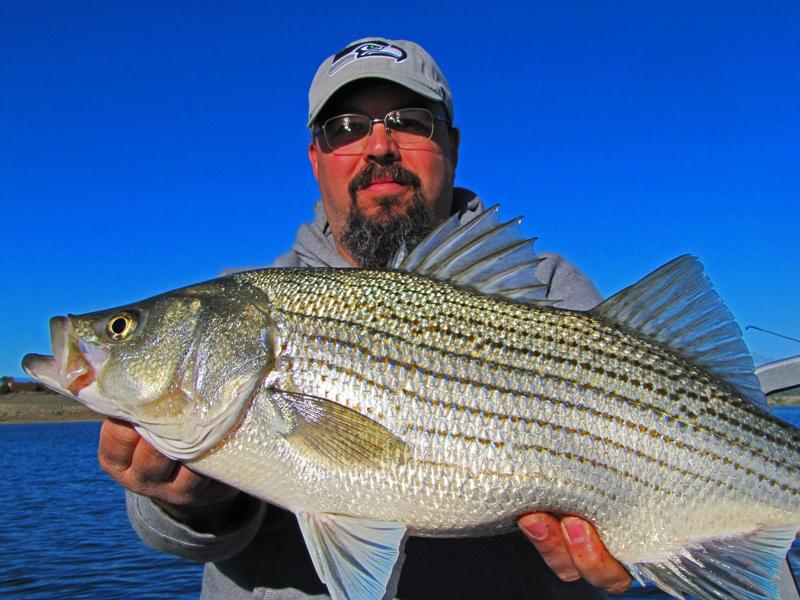 Colorado fishing bag limits style guru fashion glitz for Antero reservoir fishing report